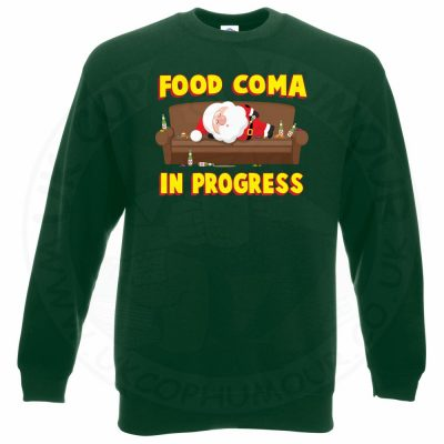 FOOD COMA IN PROGESS Sweatshirt - Bottle Green, 2XL